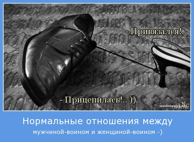 http://s2.uploads.ru/04lMz.jpg