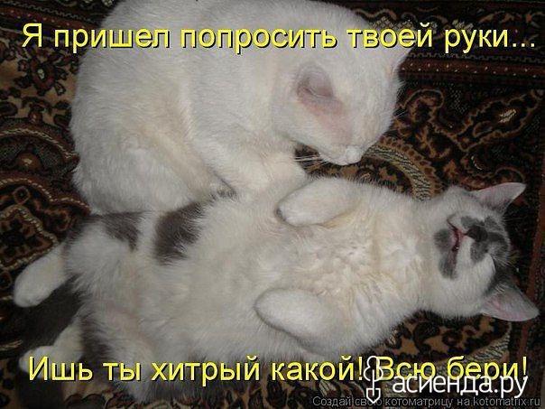 http://s2.uploads.ru/14APe.jpg