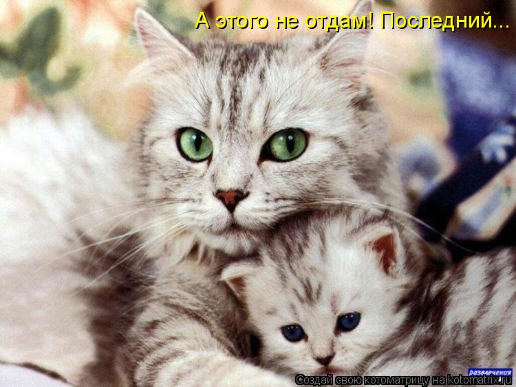http://s2.uploads.ru/1oaOx.jpg