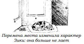 http://s2.uploads.ru/2Adcj.jpg