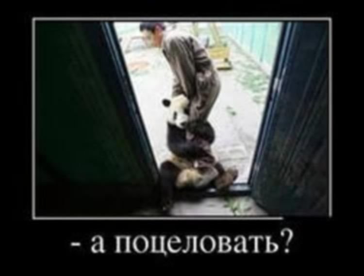 http://s2.uploads.ru/2RDpy.jpg