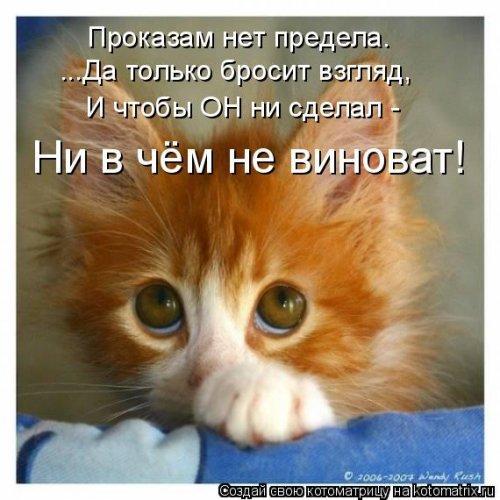 http://s2.uploads.ru/2nYlr.jpg