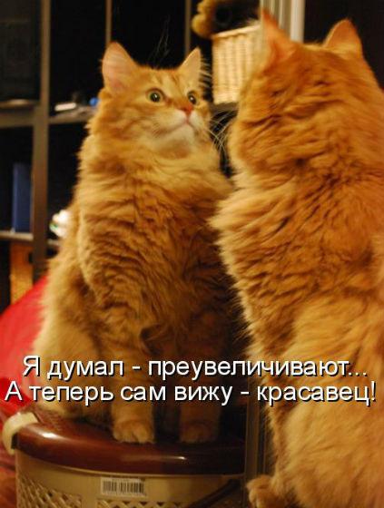 http://s2.uploads.ru/3YWVZ.jpg