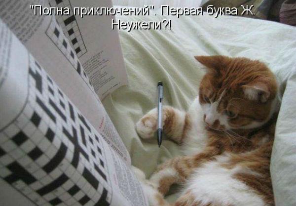 http://s2.uploads.ru/3bDYk.jpg