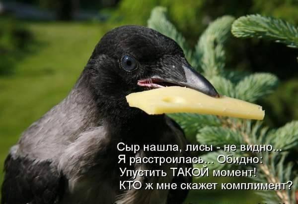 http://s2.uploads.ru/3qELc.jpg