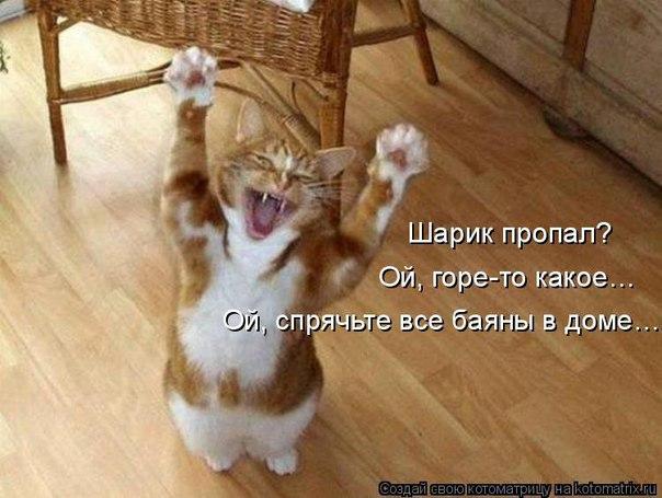 http://s2.uploads.ru/4ZzOK.jpg