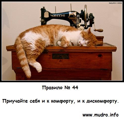 http://s2.uploads.ru/4zYo8.jpg