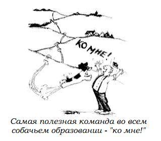 http://s2.uploads.ru/59IGB.jpg