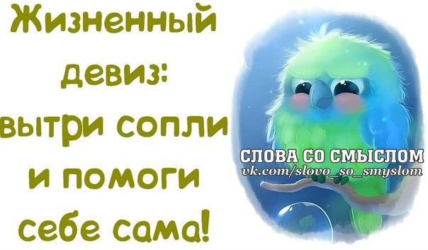 http://s2.uploads.ru/5AVvJ.jpg