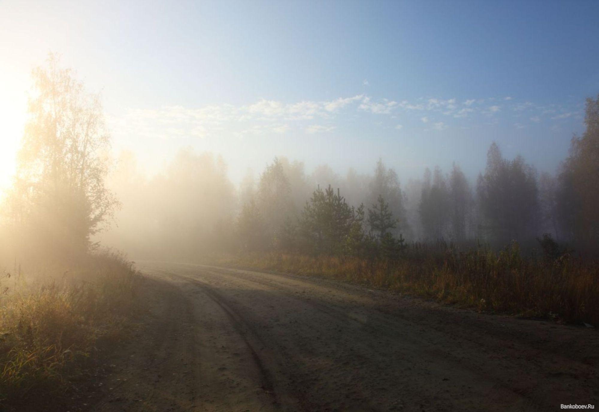 http://s2.uploads.ru/5LxGy.jpg