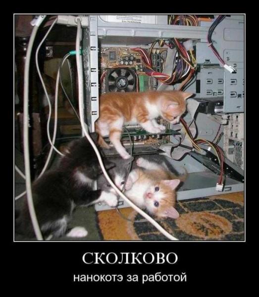 http://s2.uploads.ru/5xd97.jpg