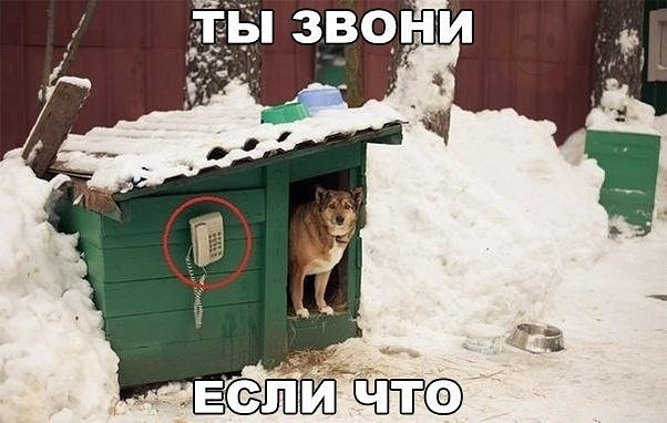 http://s2.uploads.ru/61gCG.jpg