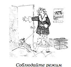http://s2.uploads.ru/6PnCR.jpg