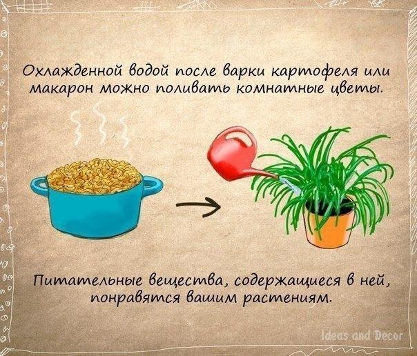 http://s2.uploads.ru/6yhqH.jpg