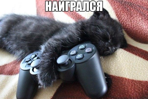 http://s2.uploads.ru/7ZUoY.jpg