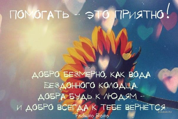 http://s2.uploads.ru/9HO4F.jpg