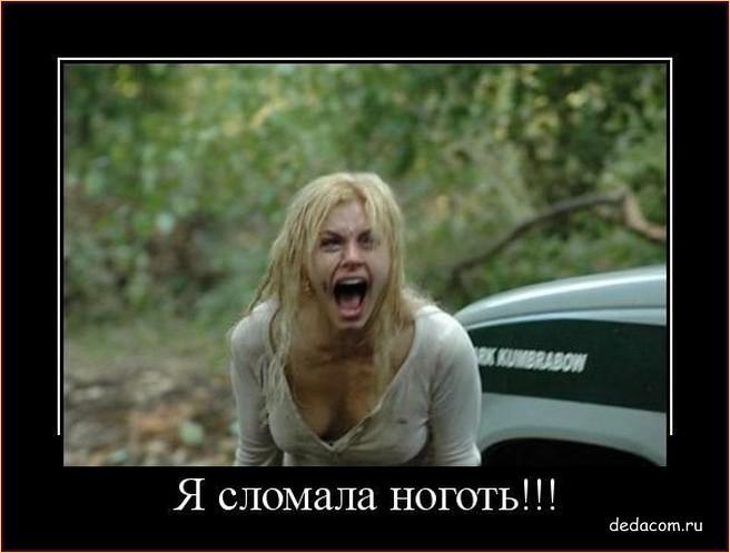 http://s2.uploads.ru/9qOGv.jpg