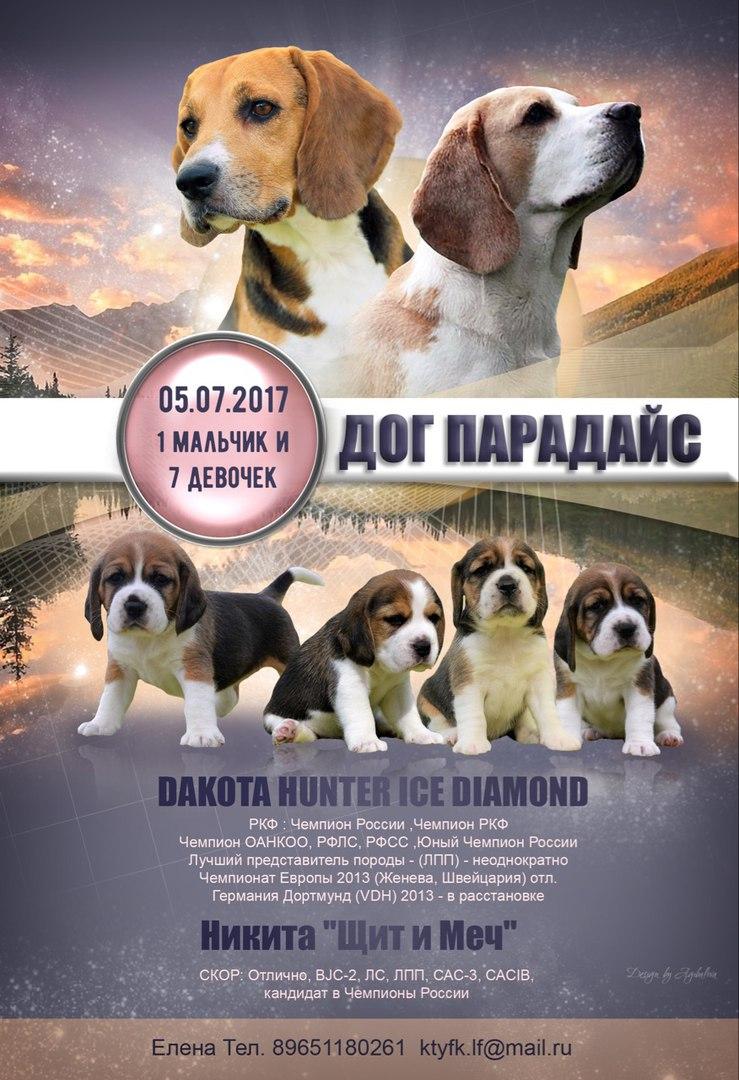 http://s2.uploads.ru/AjVwP.jpg