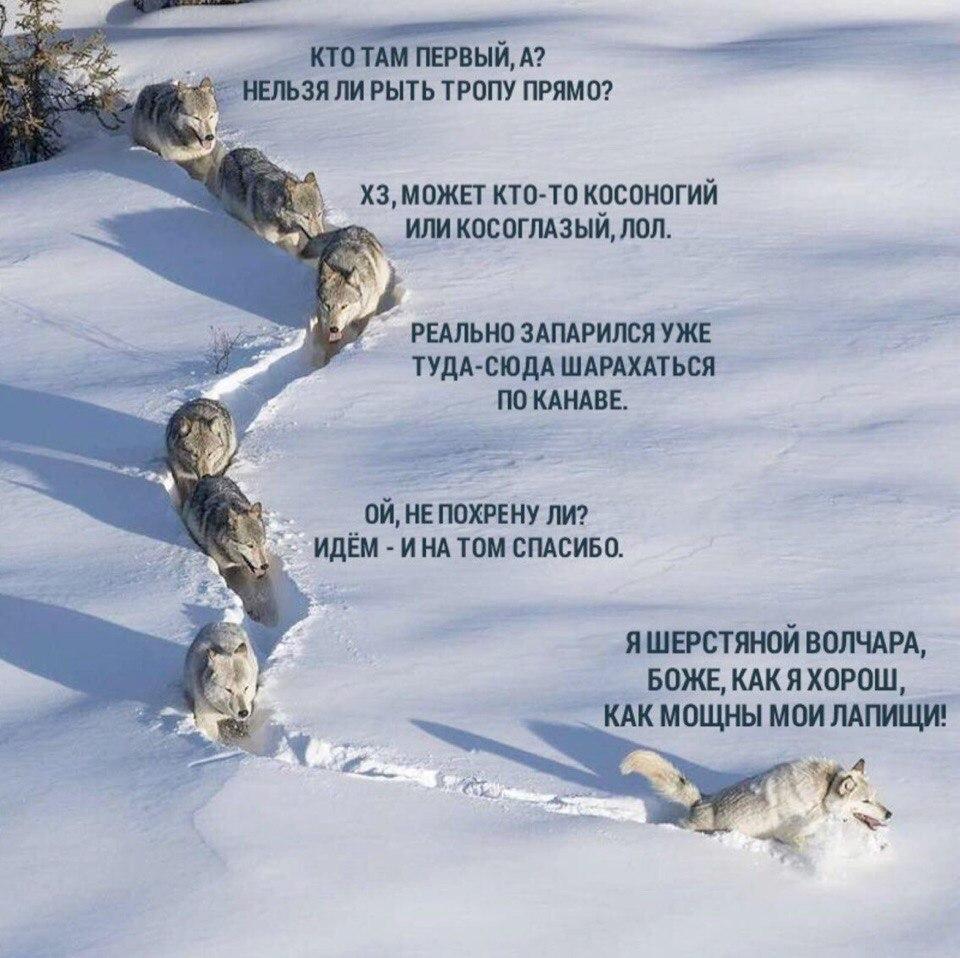 http://s2.uploads.ru/EPJhu.jpg
