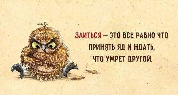 http://s2.uploads.ru/EVb6n.jpg