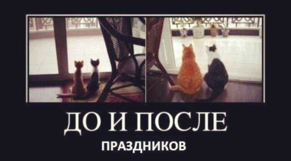 http://s2.uploads.ru/Fq9Ck.jpg