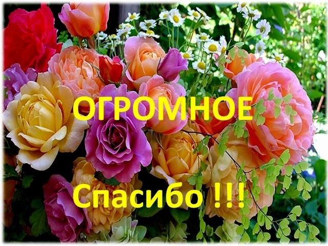 http://s2.uploads.ru/GMUKH.jpg