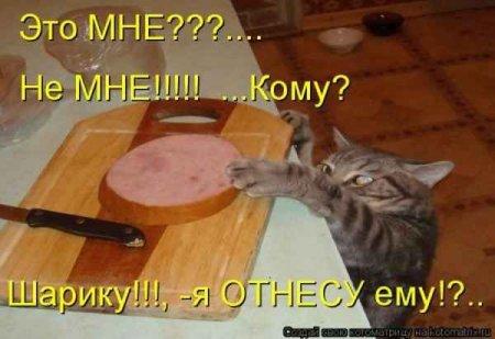 http://s2.uploads.ru/HC7AB.jpg