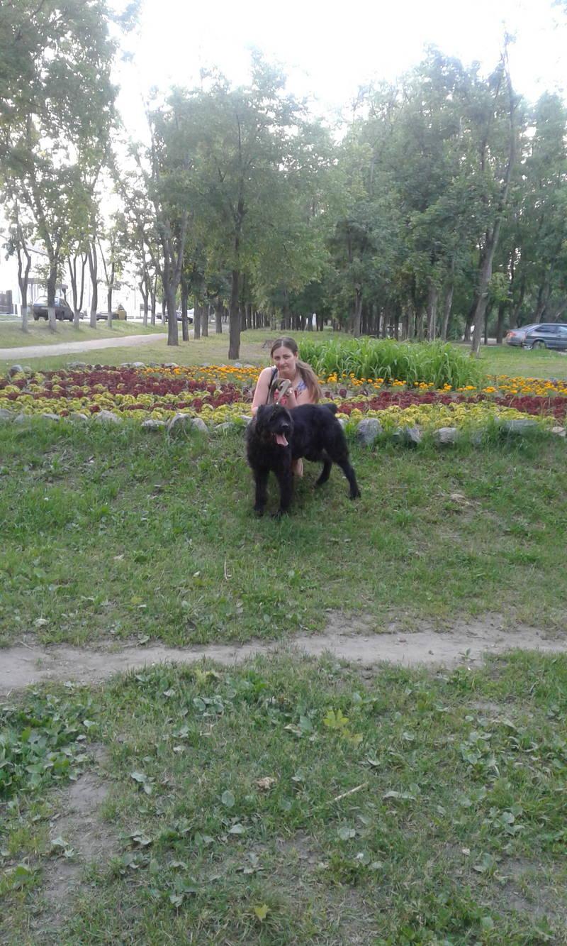 http://s2.uploads.ru/HjOJf.jpg