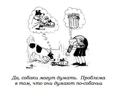 http://s2.uploads.ru/Ibr7R.jpg