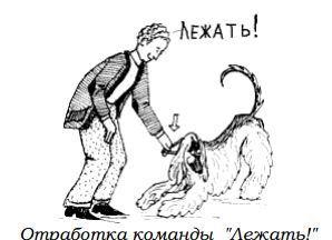http://s2.uploads.ru/JCf8s.jpg