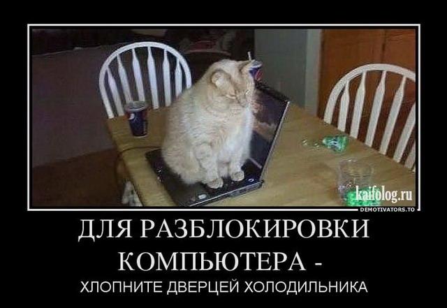 http://s2.uploads.ru/JEICL.jpg