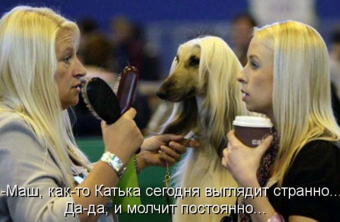 http://s2.uploads.ru/JzNyr.jpg