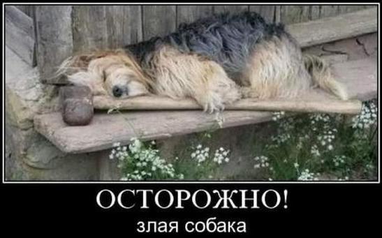 http://s2.uploads.ru/KOlmN.jpg