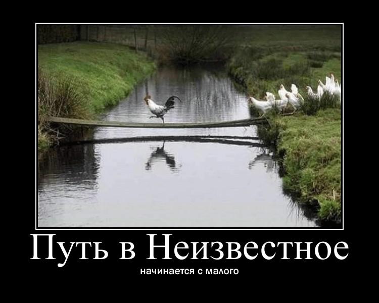 http://s2.uploads.ru/KZk3a.jpg