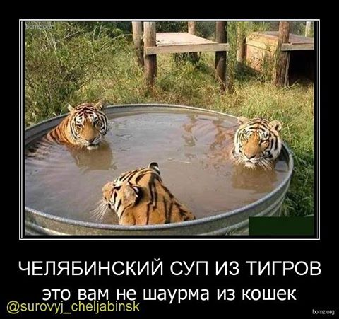 http://s2.uploads.ru/KahYS.jpg
