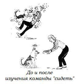 http://s2.uploads.ru/Kt79w.jpg