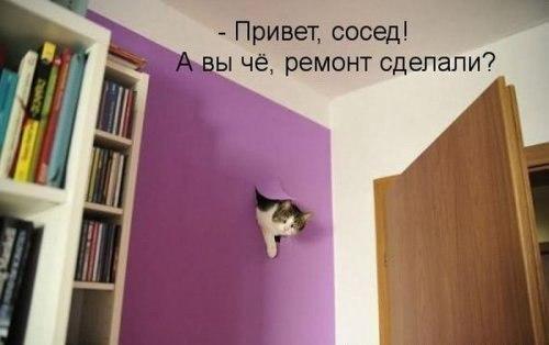 http://s2.uploads.ru/Lm208.jpg