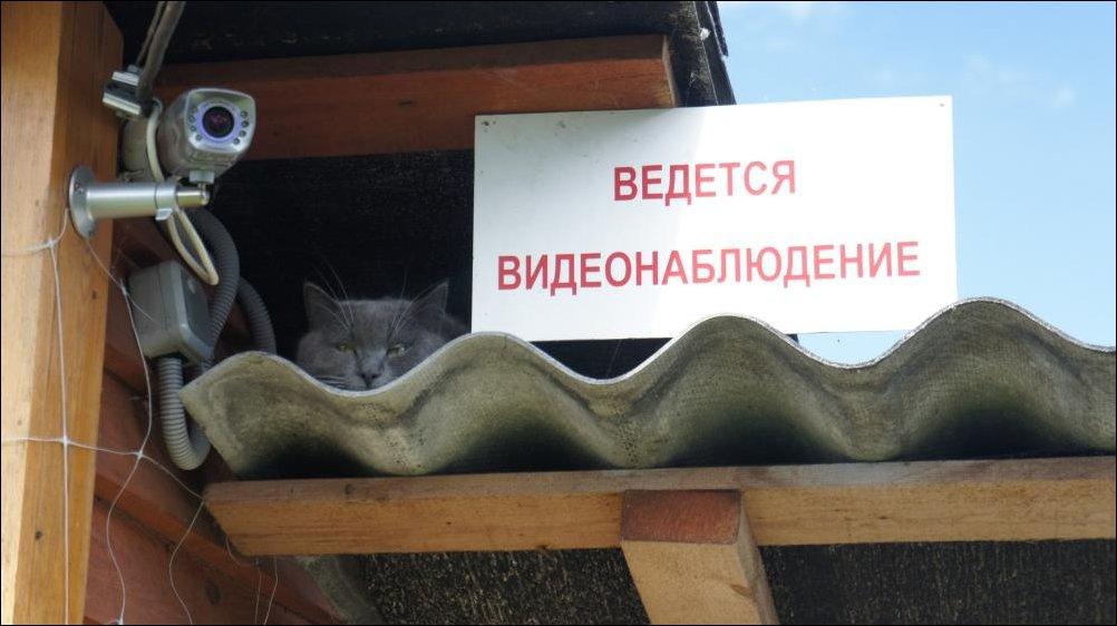 http://s2.uploads.ru/MJhcm.jpg
