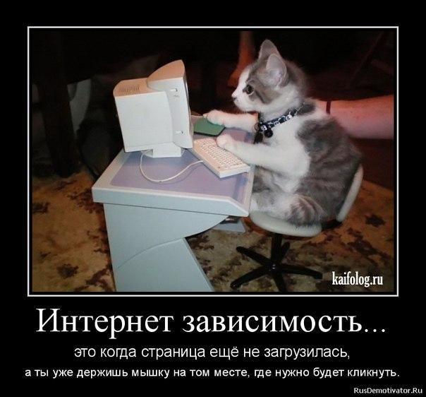 http://s2.uploads.ru/Md48q.jpg