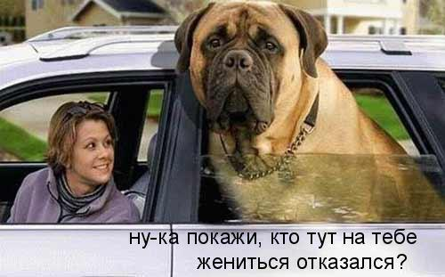 http://s2.uploads.ru/OeNTw.jpg