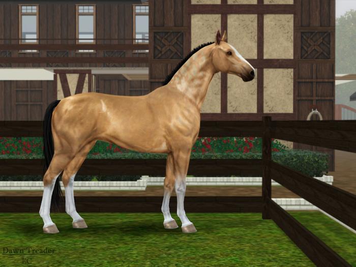 Регистрация лошадей в RHF 1.1 OwHBf
