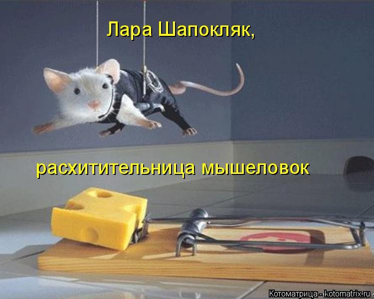 http://s2.uploads.ru/PCB0T.jpg