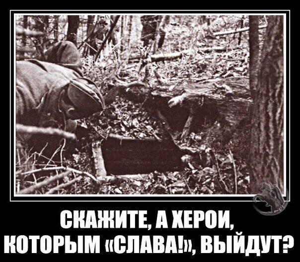http://s2.uploads.ru/PD579.jpg