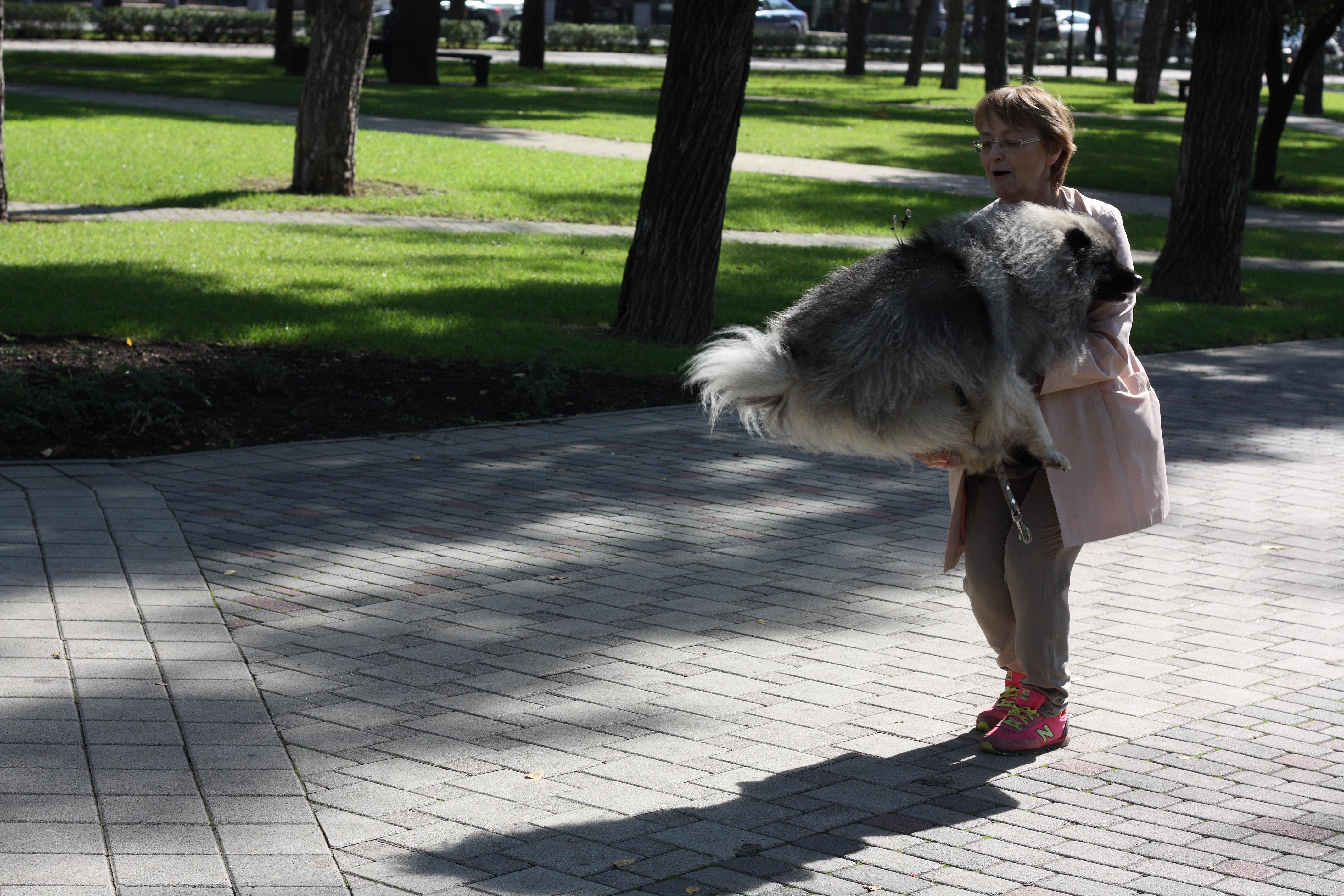 http://s2.uploads.ru/PUHxV.jpg