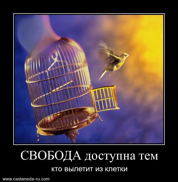 http://s2.uploads.ru/QDHGB.jpg