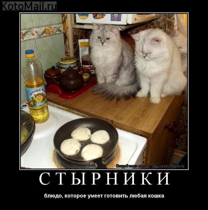 http://s2.uploads.ru/QraHN.jpg