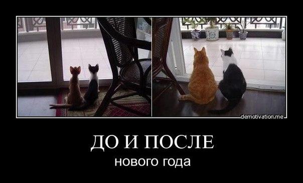 http://s2.uploads.ru/RPpej.jpg