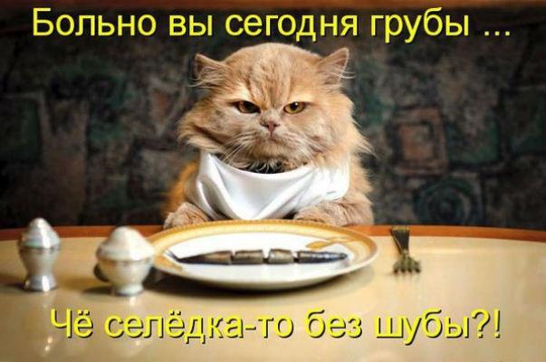 http://s2.uploads.ru/RdUyW.jpg