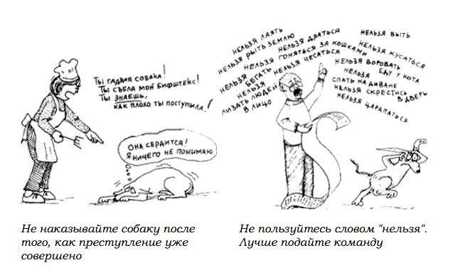 http://s2.uploads.ru/Rptud.jpg