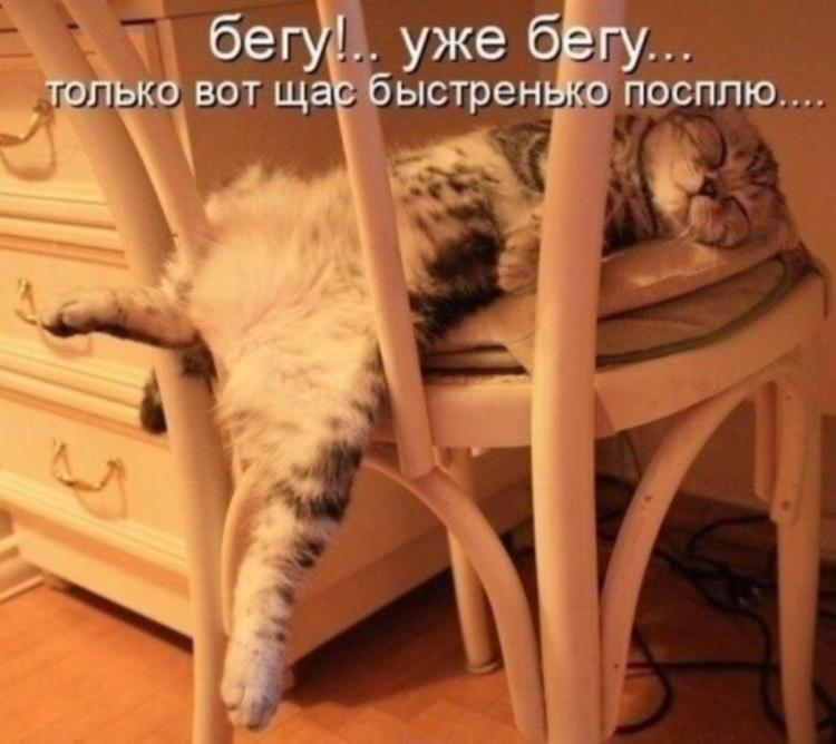 http://s2.uploads.ru/SQhKG.jpg